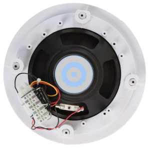 ceiling spkr for distributed speaker systems