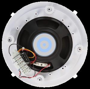Spkr soffitto per sistemi di diffusori distribuiti